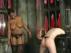 Fur pie thrashing and butt smacking