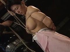Breasty oriental milf fastened & fastened