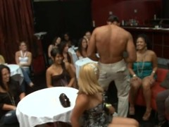 Cute stripper receives his dong sucked by sundry sexy babes